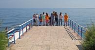 Россия потратит 2 млрд рублей на отдых детей в здравницах Крыма