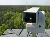 Тамбовские леса попадут под прицел видеокамер