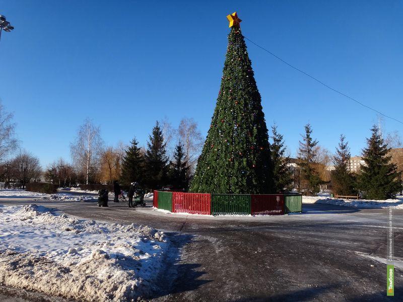 Тамбовчан ждет бесснежный Новый год