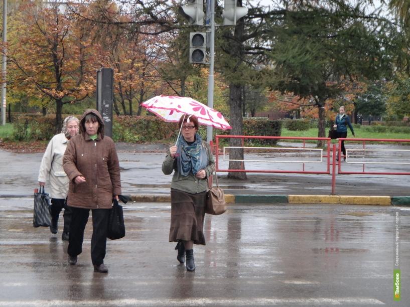 В Тамбове пешеходный переход на Мичуринской стал нерегулируемым
