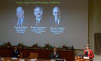 Работы по онкологии пролетели мимо Нобелевской премии