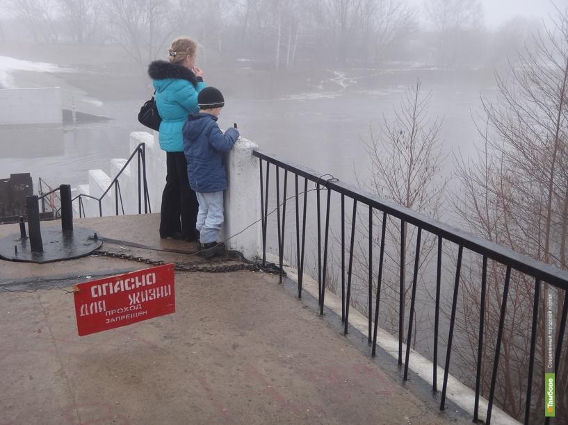 Вода в Цне поднялась больше чем на метр
