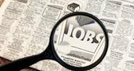 Чуть более половины студентов Черноземья планируют найти постоянную работу