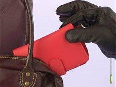 Полицейские вернули беспечной тамбовчанке пропавшие деньги
