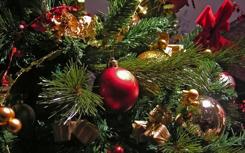 В Тамбове готовятся к губернаторской елке