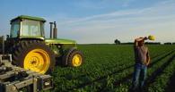 Тамбовские фермеры получили гранты на развитие сельского хозяйства