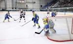Тамбовские хоккеисты обыграли команду из Набережных Челнов