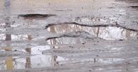 На Лысогорской начали латать ямы
