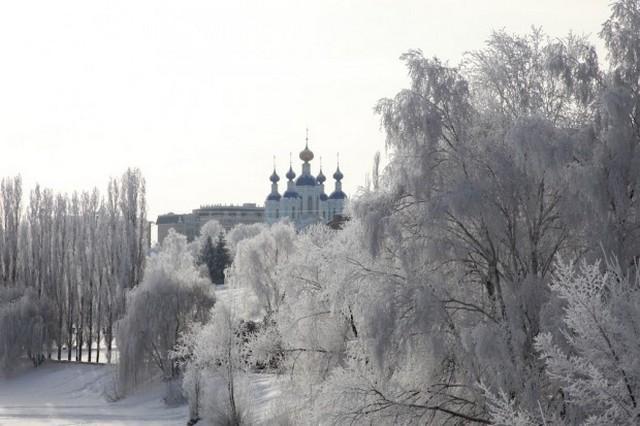 Тамбовщину вновь признали самым экологически чистым регионом России
