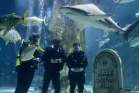 Работники лондонского океанариума похоронили рыбу по-человечески