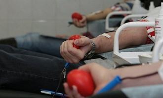 Четыре рабочих коллектива Тамбова в 2016 году сдали больше всего крови