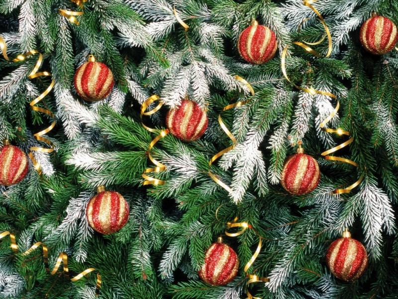 В Мичуринске установят шесть городских елок