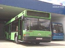По улицам Тамбова будут ездить белорусские автобусы