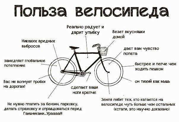 ВелосипедуДА: правила езды