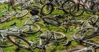 Безопасность велосипедиста: выезжаем на проезжую часть