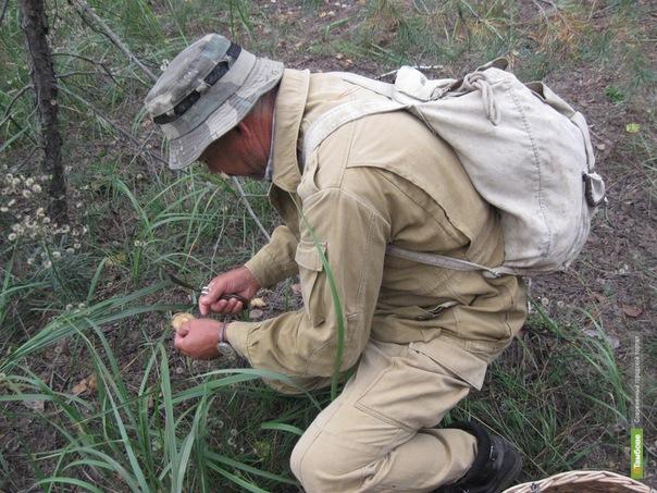 Тамбовские спасатели нашли заблудившихся грибников