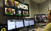В России начинает вещание первый мусульманский телеканал
