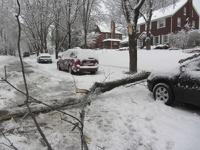 Из-за снежной бури 400 тысяч американцев остались без света