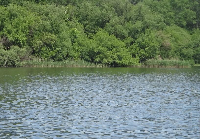 За один вечер в Тамбовской области выловили двух утопленников