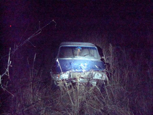 Легковушка въехала в кусты: водитель в больнице