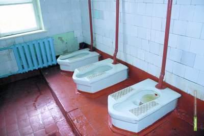 Тамбовского губернатора просят починить школьные туалеты
