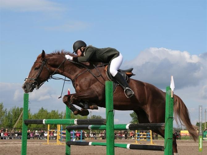 На тамбовском ипподроме пройдет большой конно-спортивный праздник