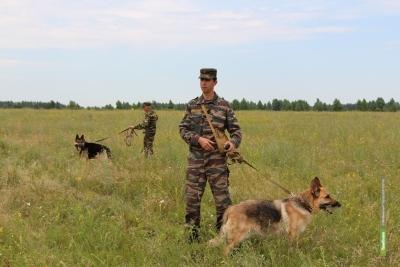 На Тамбовщине с начала года служебные собаки «вынюхали» 5 килограммов наркотиков