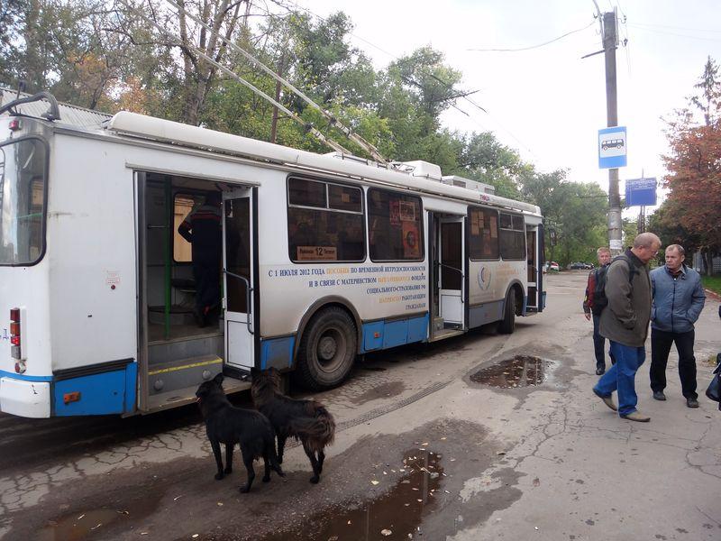 В Тамбове выберут лучшего водителя городского транспорта