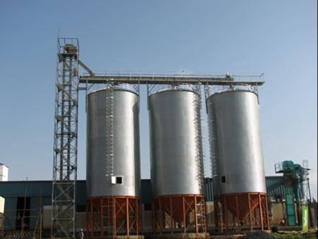 На Тамбовщине построят завод по глубокой переработке зерна