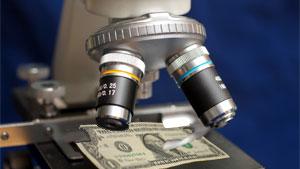 Тамбовские учёные получат гранты на 740 тысяч рублей