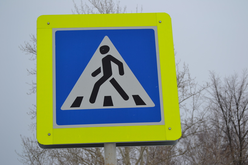 На двух участках трассы Тамбов-Шацк ввели ограничение скорости
