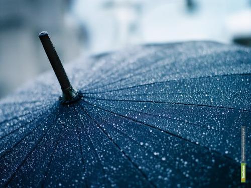 К концу апреля Тамбовщину накроют затяжные дожди