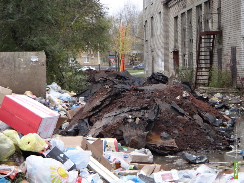 Прокуратура тщетно пытается заставить чиновников очистить Тамбов от мусора