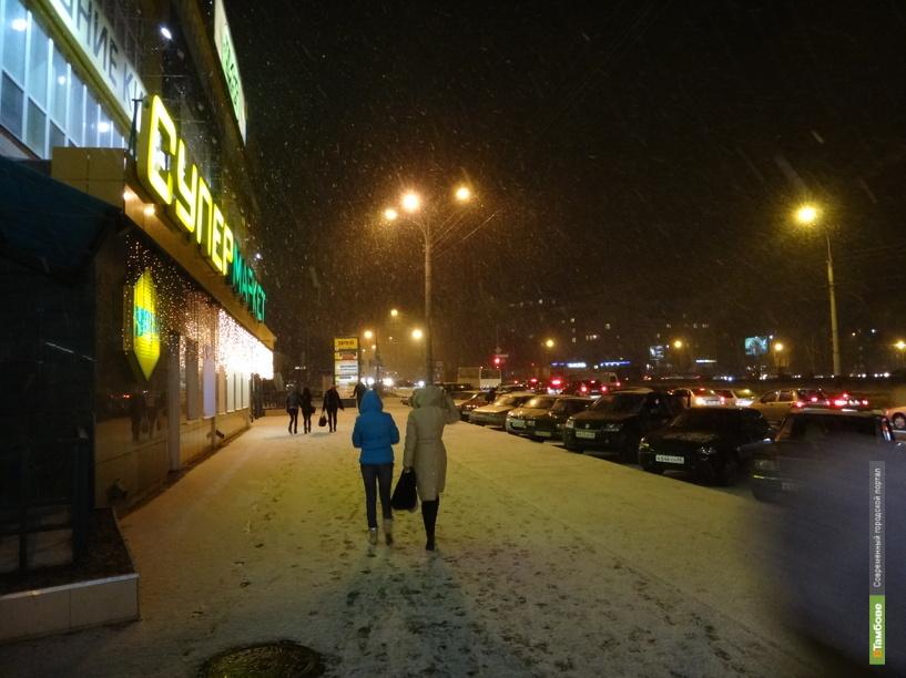 Новый год в Тамбове будет снежным