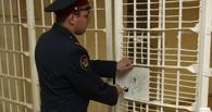 В Тамбовской области арестовали автолюбителя