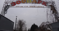 Зоопарк в Тамбове переходит на зимний режим