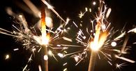Новогодние праздники в Тамбове прошли спокойно
