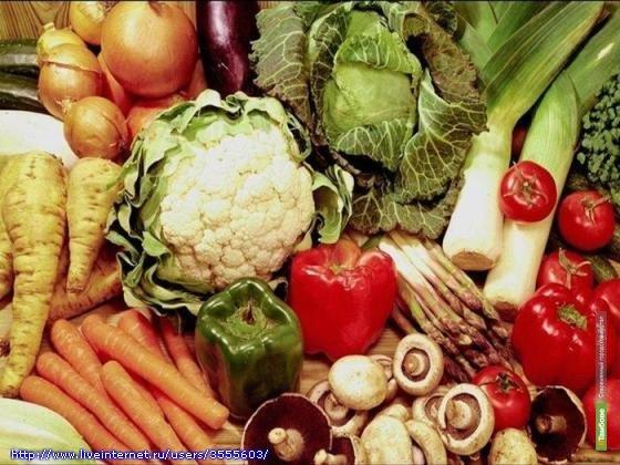 Тамбовским овощам и фруктам придадут товарный вид