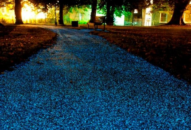 В Тамбове может появиться светящийся асфальт