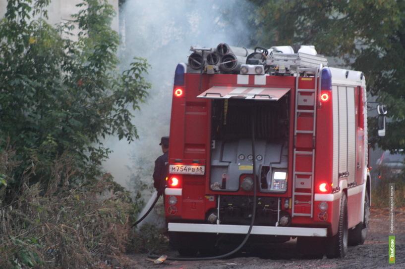Во время пожара на Тамбовщине погибла пенсионерка
