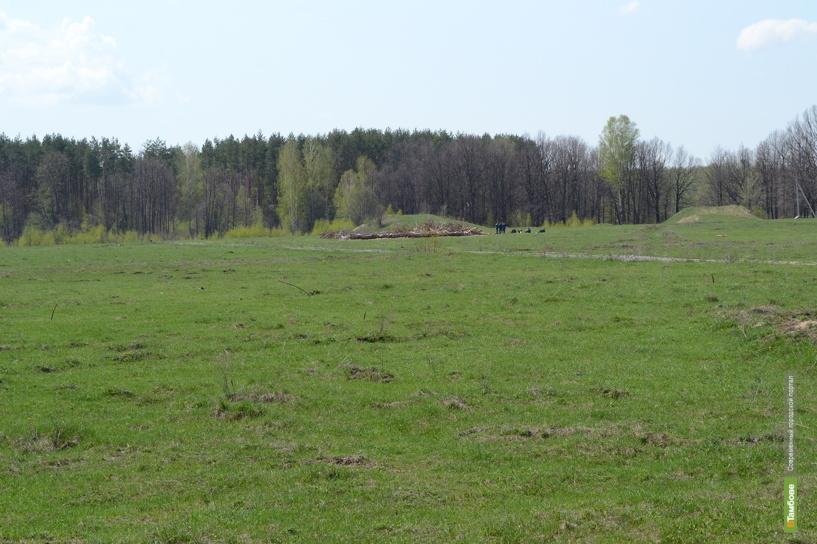 В экологическом рейтинге страны Тамбовская область держится в лидерах