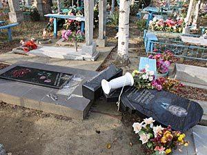 На Тамбовщине дети разгромили кладбище
