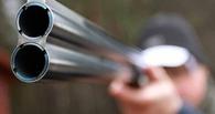 Житель столицы подстрелил лося в лесополосе Староюрьевского района