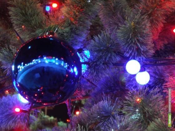 Парад новогодних и рождественских мероприятий завершится большим концертом