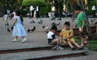 Власти мексиканского штата запретили называть детей Бургер Кингом