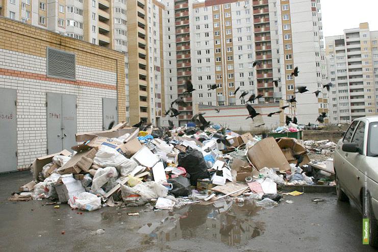 Горадминистрацию заставили оборудовать север Тамбова мусорными площадками