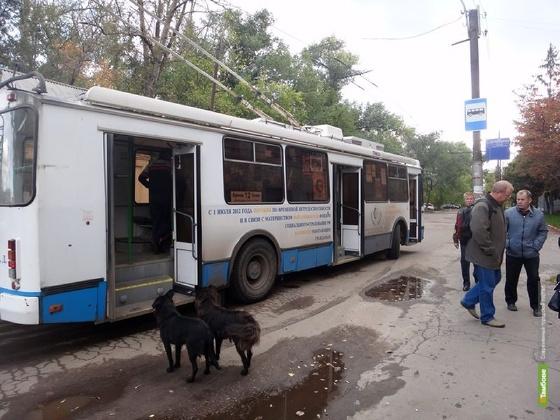 Троллейбусные линии Тамбова могут стать длиннее
