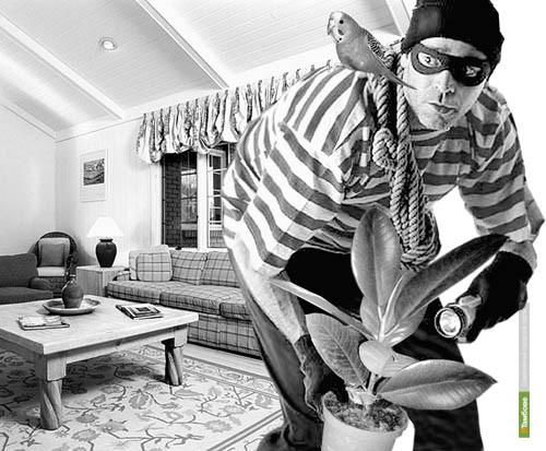 В преддверии отпусков милиционеры устроят рейд по квартирам тамбовчан