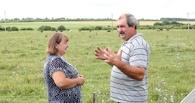 Тамбовские фермеры получили более 110 миллионов рублей господдержки