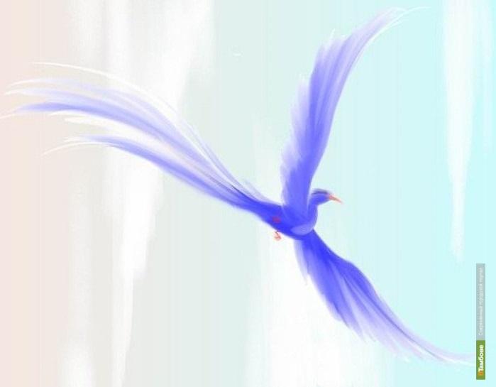 В рамках «Студвесны» пройдёт фестиваль «Синяя птица»